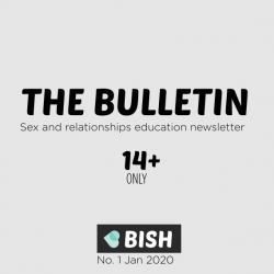 The Bulletin sex and relationships education newsletter for young people over 14